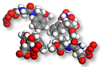 Молекула с привличащ феромон - клетъчна структура